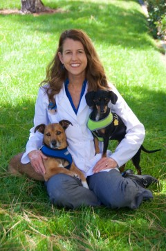 Dr. Deirdre Brandes, Solana Beach veterinarian